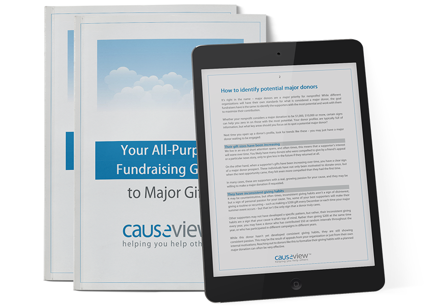 Ebook Mockup Causeview